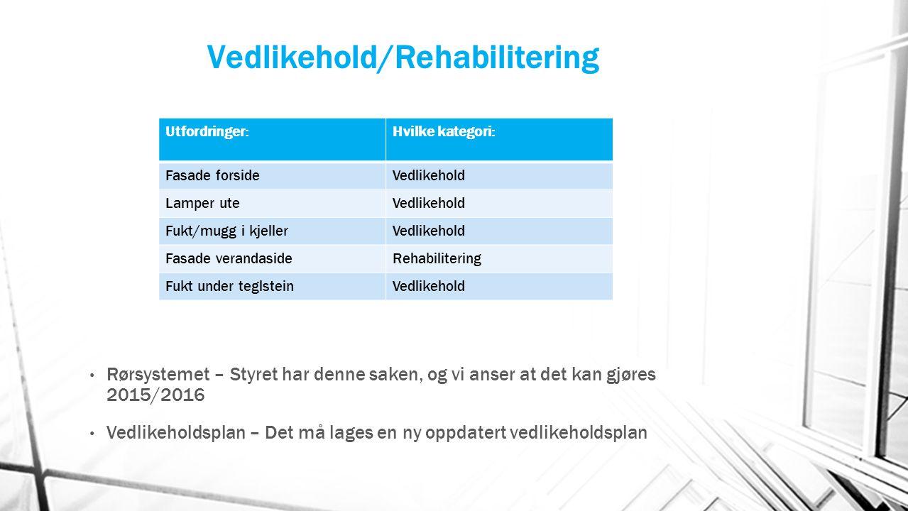 Vedlikehold/Rehabilitering Rørsystemet – Styret har denne saken, og vi anser at det kan gjøres 2015/2016 Vedlikeholdsplan – Det må lages en ny oppdate