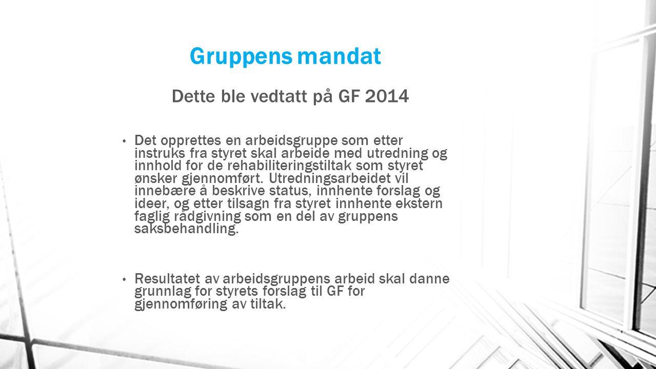 Gruppens mandat Dette ble vedtatt på GF 2014 Det opprettes en arbeidsgruppe som etter instruks fra styret skal arbeide med utredning og innhold for de