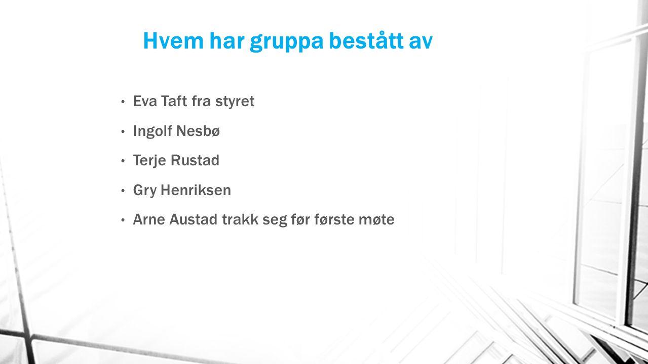 Hvem har gruppa bestått av Eva Taft fra styret Ingolf Nesbø Terje Rustad Gry Henriksen Arne Austad trakk seg før første møte