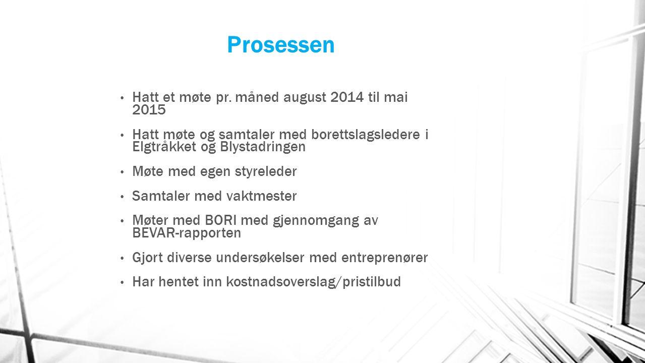 Prosessen Hatt et møte pr. måned august 2014 til mai 2015 Hatt møte og samtaler med borettslagsledere i Elgtråkket og Blystadringen Møte med egen styr