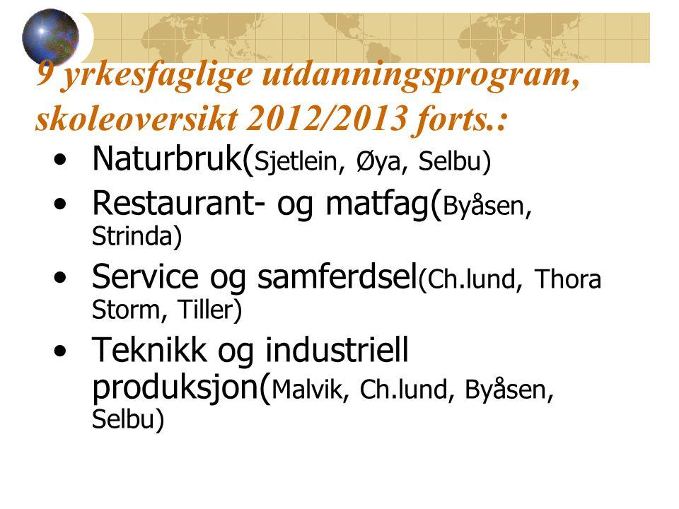9 yrkesfaglige utdanningsprogram, skoleoversikt 2012/2013 forts.: Naturbruk( Sjetlein, Øya, Selbu) Restaurant- og matfag( Byåsen, Strinda) Service og