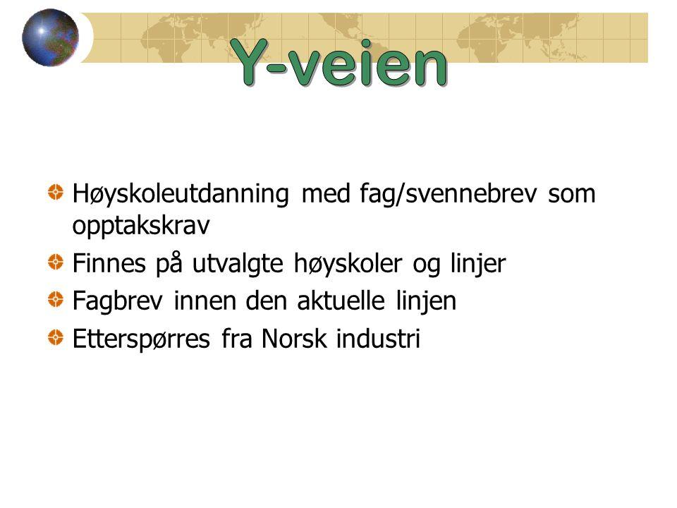 Høyskoleutdanning med fag/svennebrev som opptakskrav Finnes på utvalgte høyskoler og linjer Fagbrev innen den aktuelle linjen Etterspørres fra Norsk industri