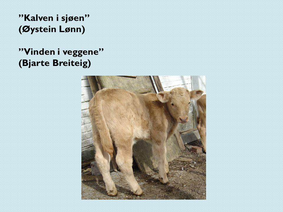 """""""Kalven i sjøen"""" (Øystein Lønn) """"Vinden i veggene"""" (Bjarte Breiteig)"""