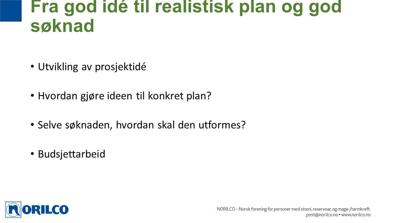 Utvikling av prosjektidé Hvordan gjøre ideen til konkret plan? Selve søknaden, hvordan skal den utformes? Budsjettarbeid Fra god idé til realistisk pl