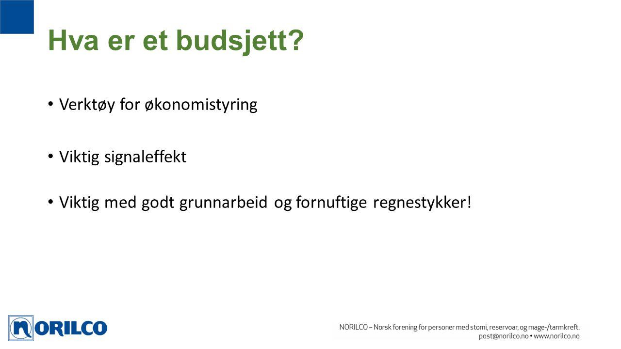 Verktøy for økonomistyring Viktig signaleffekt Viktig med godt grunnarbeid og fornuftige regnestykker! Hva er et budsjett?