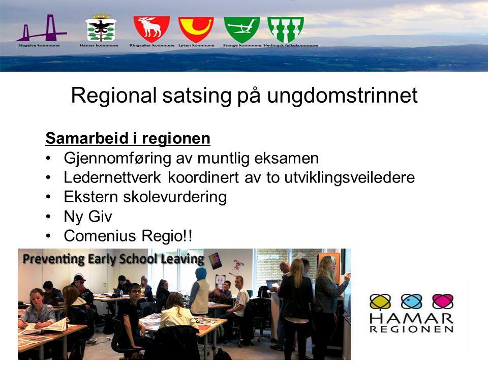 Samarbeid i regionen Gjennomføring av muntlig eksamen Ledernettverk koordinert av to utviklingsveiledere Ekstern skolevurdering Ny Giv Comenius Regio!