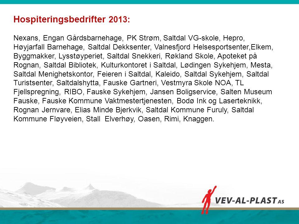 Hospiteringsbedrifter 2013: Nexans, Engan Gårdsbarnehage, PK Strøm, Saltdal VG-skole, Hepro, Høyjarfall Barnehage, Saltdal Dekksenter, Valnesfjord Hel