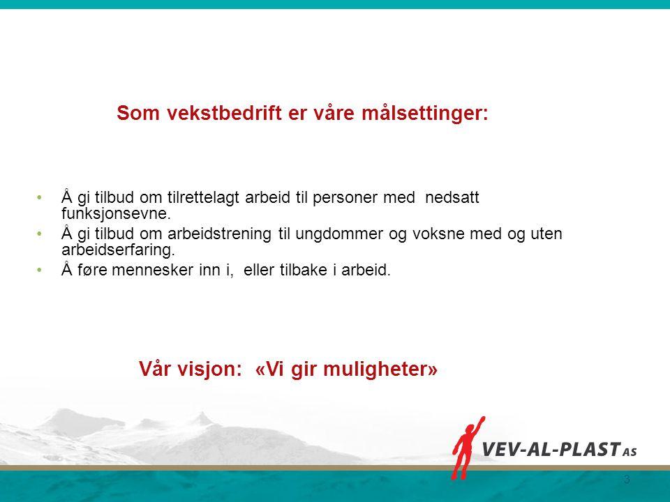 Organisasjonskart for Vev-Al-Plast AS 2013 4 Styret i Vev-Al-Plast as Styreleder Leif Karlsen Trine Stenvold Daglig leder Vacuumavd.