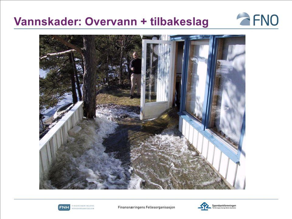 Vannskader: Overvann + tilbakeslag