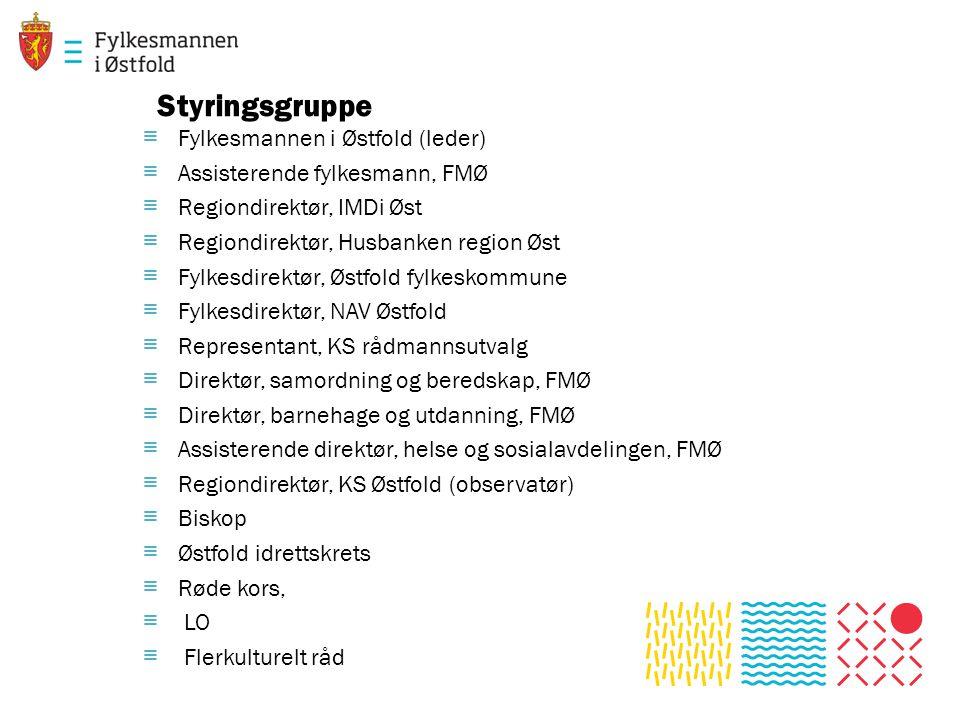 Styringsgruppe ≡ Fylkesmannen i Østfold (leder) ≡ Assisterende fylkesmann, FMØ ≡ Regiondirektør, IMDi Øst ≡ Regiondirektør, Husbanken region Øst ≡ Fyl
