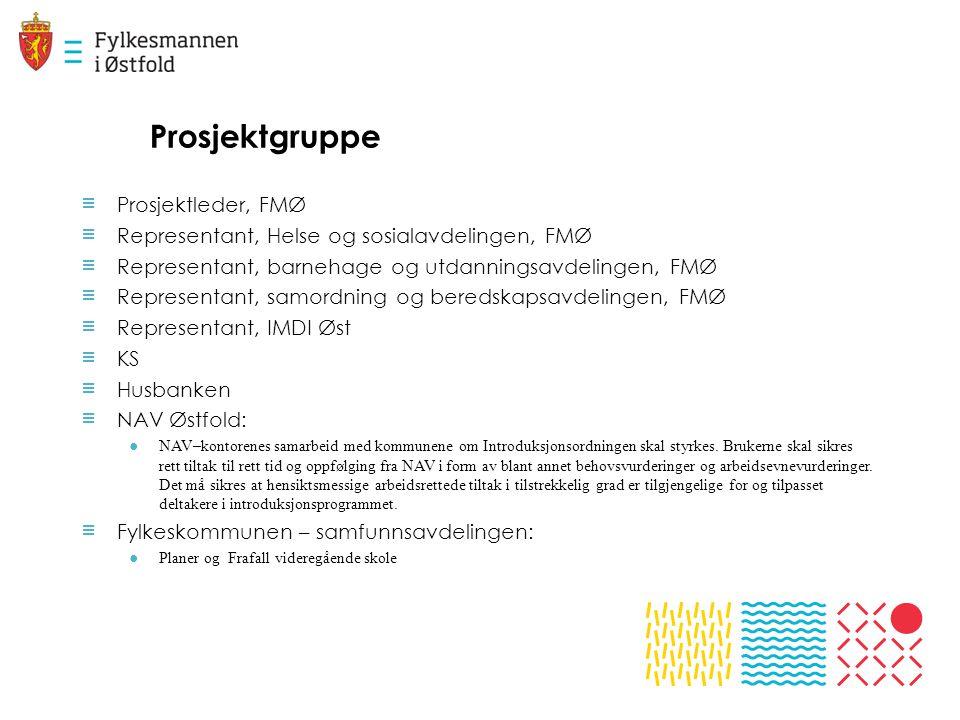 Prosjektgruppe ≡ Prosjektleder, FMØ ≡ Representant, Helse og sosialavdelingen, FMØ ≡ Representant, barnehage og utdanningsavdelingen, FMØ ≡ Representa