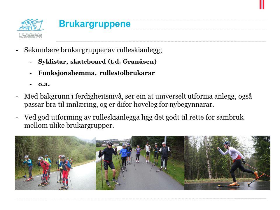 Brukargruppene -Sekundære brukargrupper av rulleskianlegg; -Syklistar, skateboard (t.d. Granåsen) -Funksjonshemma, rullestolbrukarar -o.a. -Med bakgru