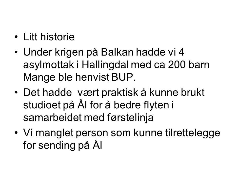 Litt historie Under krigen på Balkan hadde vi 4 asylmottak i Hallingdal med ca 200 barn Mange ble henvist BUP. Det hadde vært praktisk å kunne brukt s