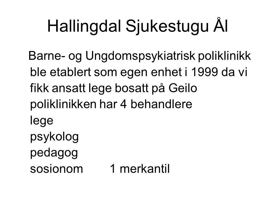 Hallingdal Sjukestugu Ål Barne- og Ungdomspsykiatrisk poliklinikk ble etablert som egen enhet i 1999 da vi fikk ansatt lege bosatt på Geilo poliklinik