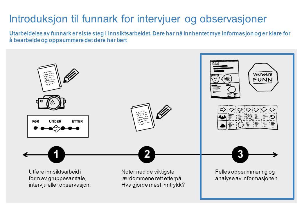 Introduksjon til funnark for intervjuer og observasjoner Felles oppsummering og analyse av informasjonen. Utføre innsiktsarbeid i form av gruppesamtal