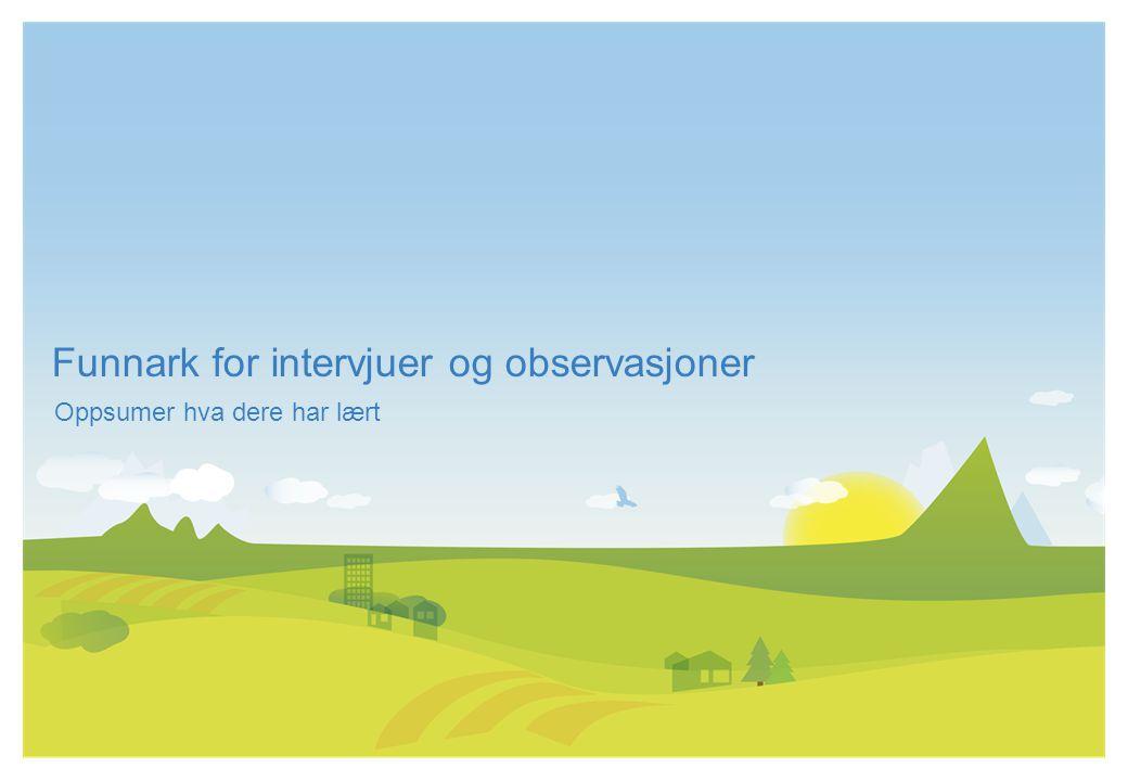 Funnark for intervjuer og observasjoner Workshop