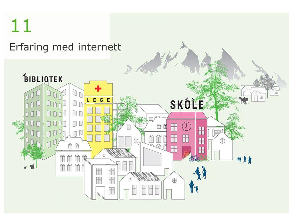 11 Erfaring med internett
