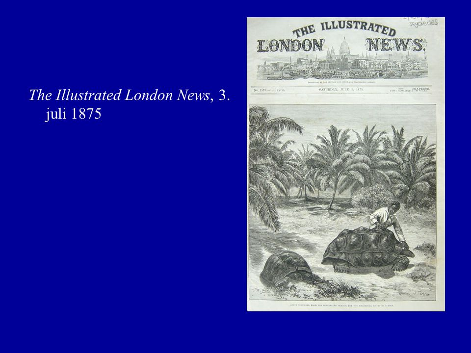 The Illustrated London News, 3. juli 1875