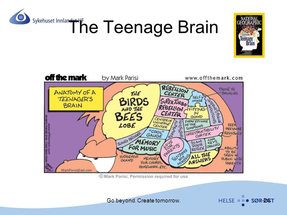 The Teenage Brain Go beyond. Create tomorrow.24