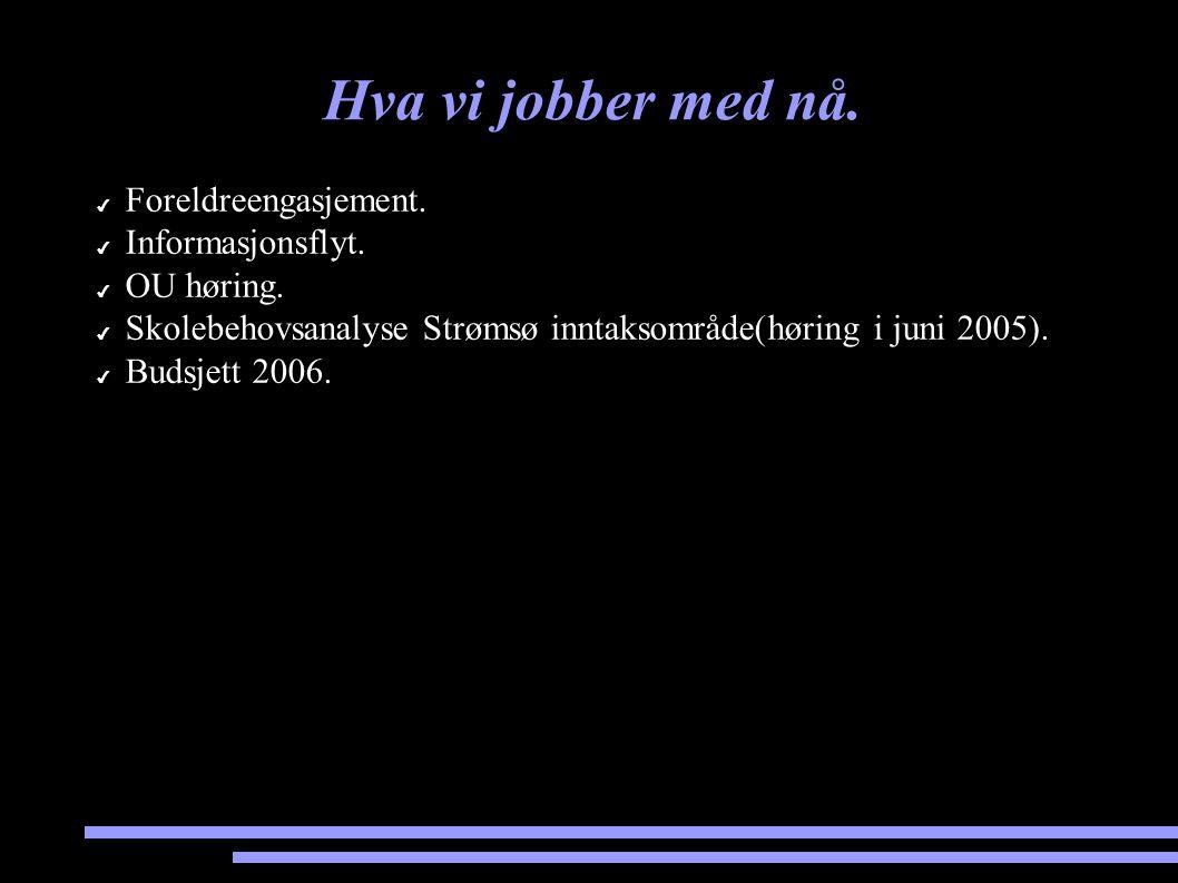 Hva vi jobber med nå. ✔ Foreldreengasjement. ✔ Informasjonsflyt. ✔ OU høring. ✔ Skolebehovsanalyse Strømsø inntaksområde(høring i juni 2005). ✔ Budsje