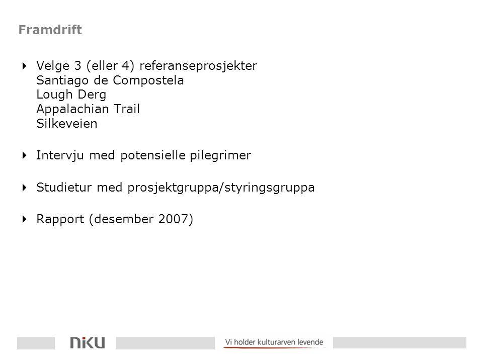 Framdrift  Velge 3 (eller 4) referanseprosjekter Santiago de Compostela Lough Derg Appalachian Trail Silkeveien  Intervju med potensielle pilegrimer  Studietur med prosjektgruppa/styringsgruppa  Rapport (desember 2007)