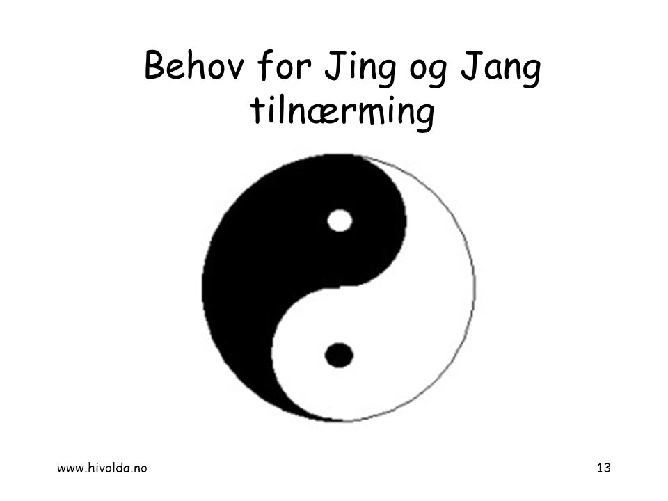 Behov for Jing og Jang tilnærming 13www.hivolda.no
