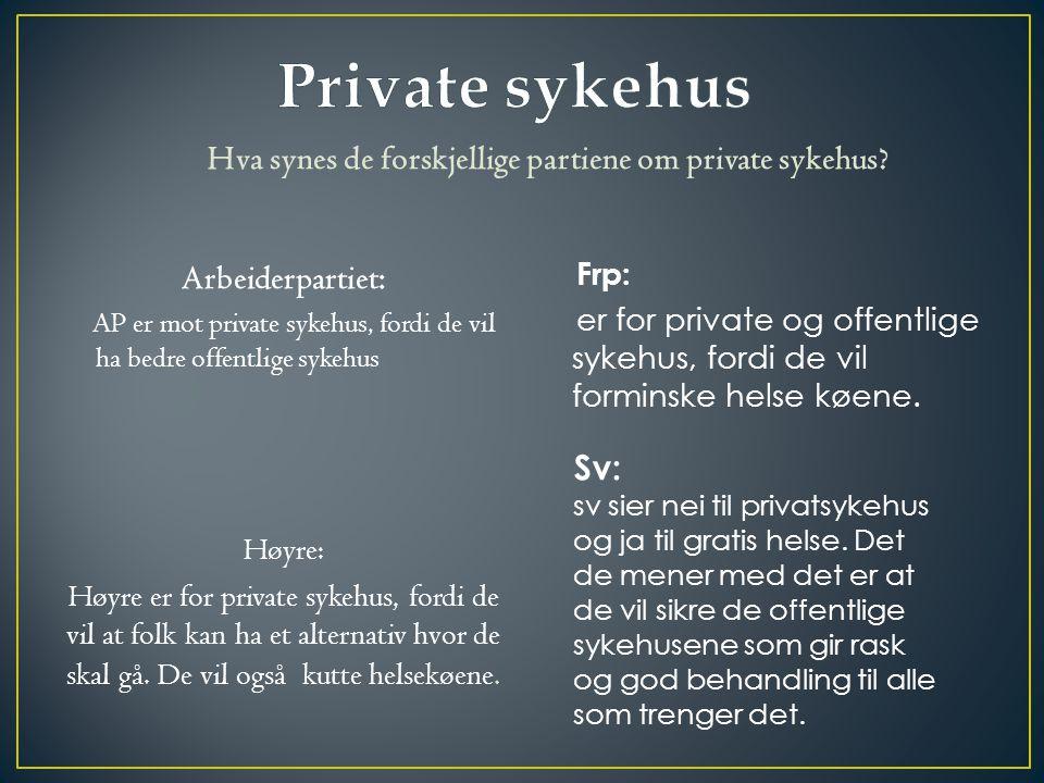 Hva synes de forskjellige partiene om private sykehus.