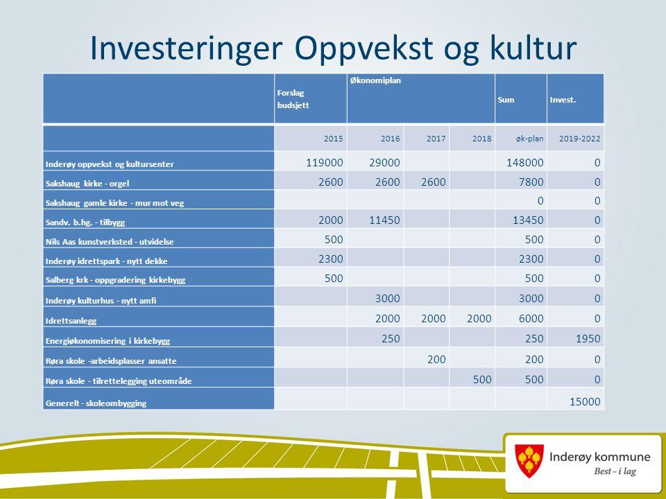 Investeringer Oppvekst og kultur Forslag budsjett Økonomiplan SumInvest.