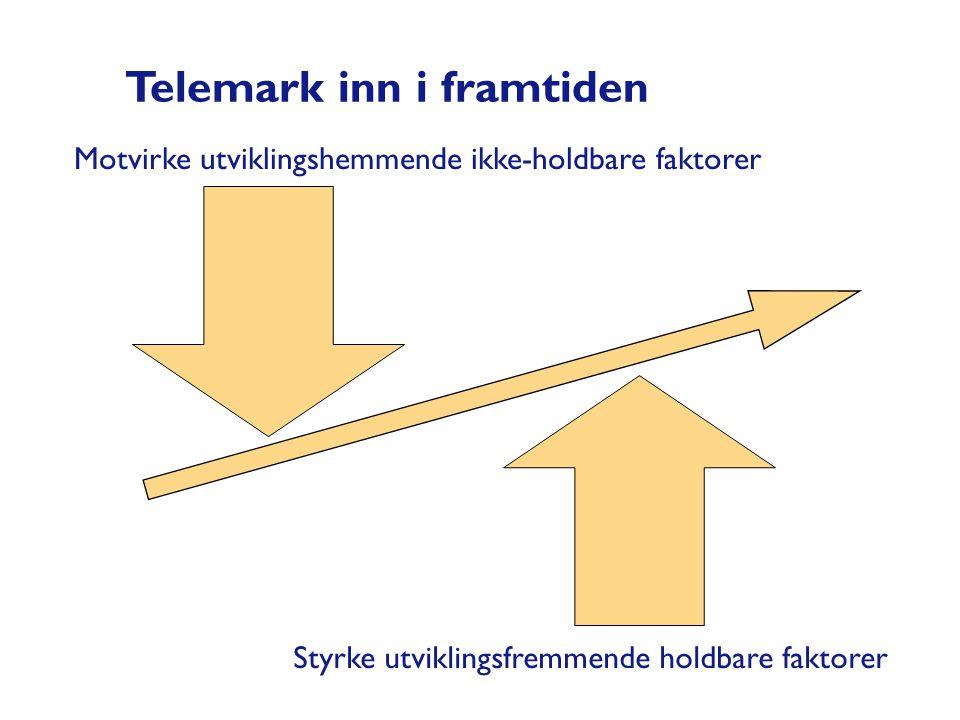 Motvirke utviklingshemmende ikke-holdbare faktorer Styrke utviklingsfremmende holdbare faktorer Telemark inn i framtiden