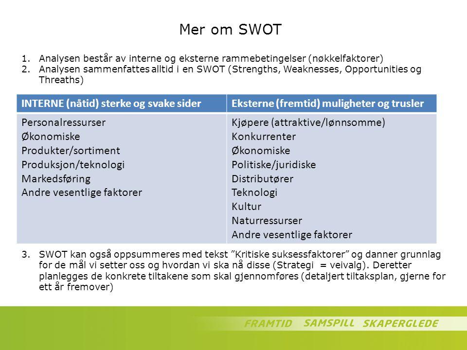 Mer om SWOT INTERNE (nåtid) sterke og svake siderEksterne (fremtid) muligheter og trusler Personalressurser Økonomiske Produkter/sortiment Produksjon/
