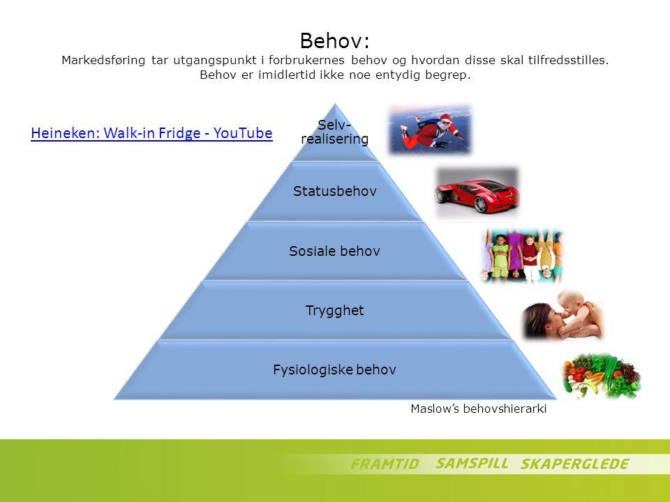 Behov: Markedsføring tar utgangspunkt i forbrukernes behov og hvordan disse skal tilfredsstilles. Behov er imidlertid ikke noe entydig begrep. Selv- r