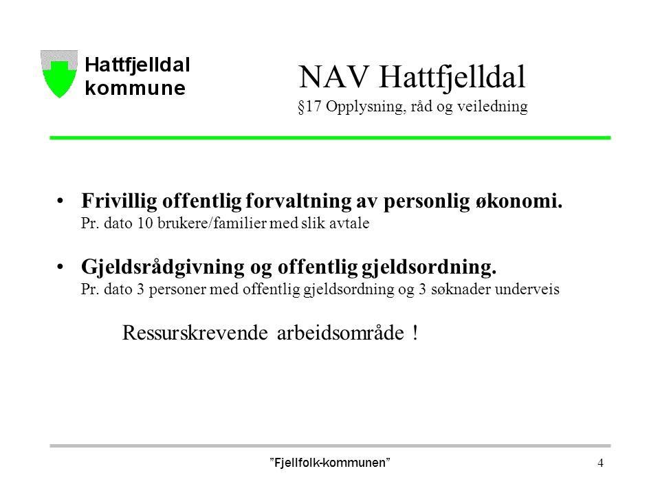 4 NAV Hattfjelldal §17 Opplysning, råd og veiledning Frivillig offentlig forvaltning av personlig økonomi. Pr. dato 10 brukere/familier med slik avtal