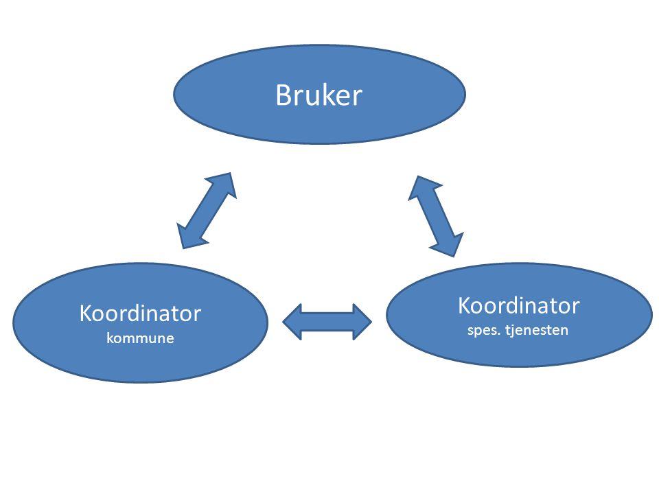 Bruker Koordinator kommune Koordinator spes. tjenesten