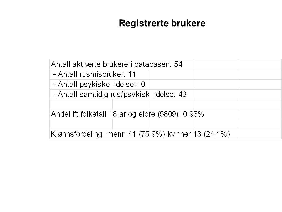 Registrerte brukere