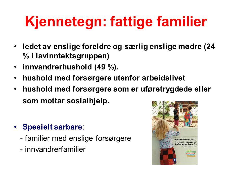 Kjennetegn: fattige familier ledet av enslige foreldre og særlig enslige mødre (24 % i lavinntektsgruppen) innvandrerhushold (49 %).
