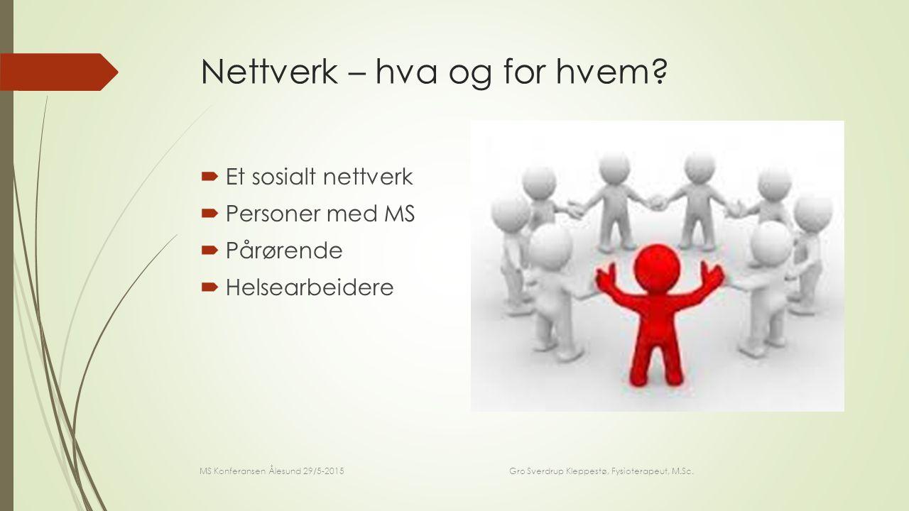 Nettverk – hva og for hvem.