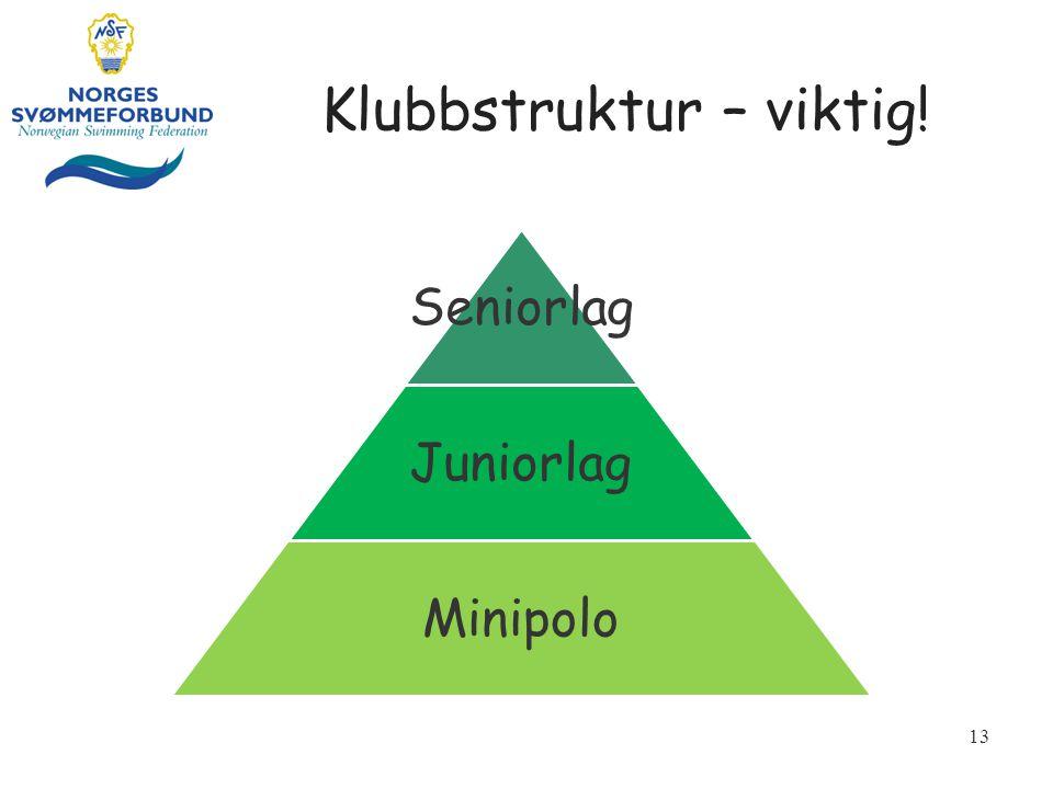 Klubbstruktur – viktig! 13 Seniorlag Juniorlag Minipolo