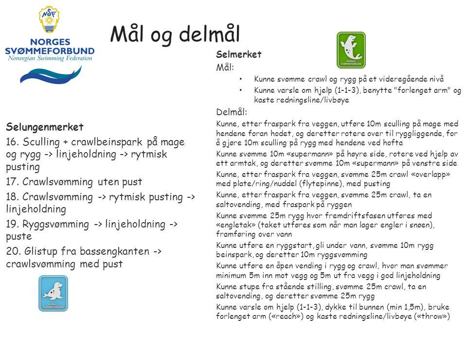 Mål og delmål Selungenmerket 16.