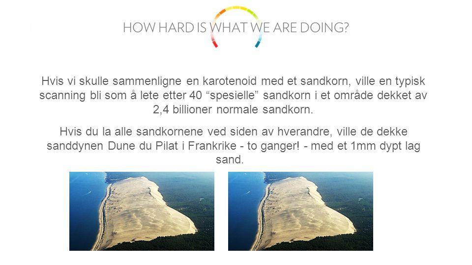 Hvis vi skulle sammenligne en karotenoid med et sandkorn, ville en typisk scanning bli som å lete etter 40 spesielle sandkorn i et område dekket av 2,4 billioner normale sandkorn.