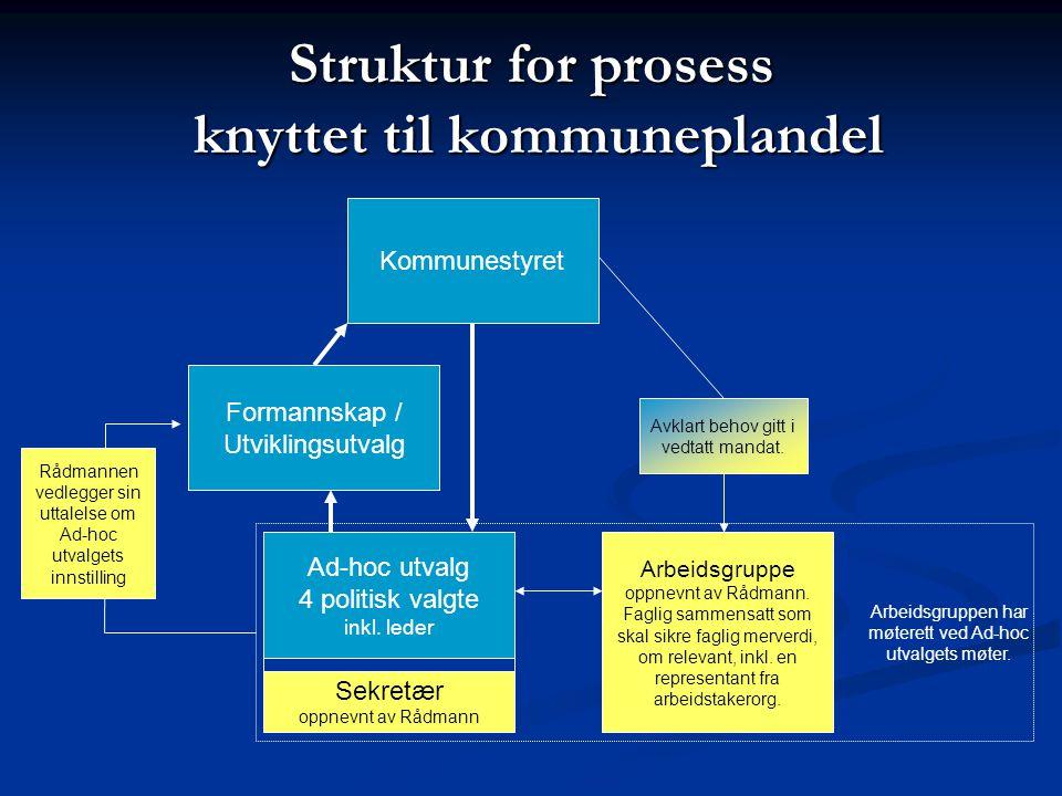 Struktur for prosess knyttet til kommuneplandel Ad-hoc utvalg 4 politisk valgte inkl.