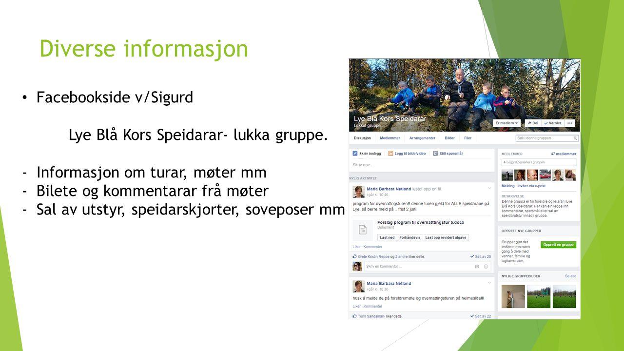 Diverse informasjon Facebookside v/Sigurd Lye Blå Kors Speidarar- lukka gruppe. -Informasjon om turar, møter mm -Bilete og kommentarar frå møter -Sal