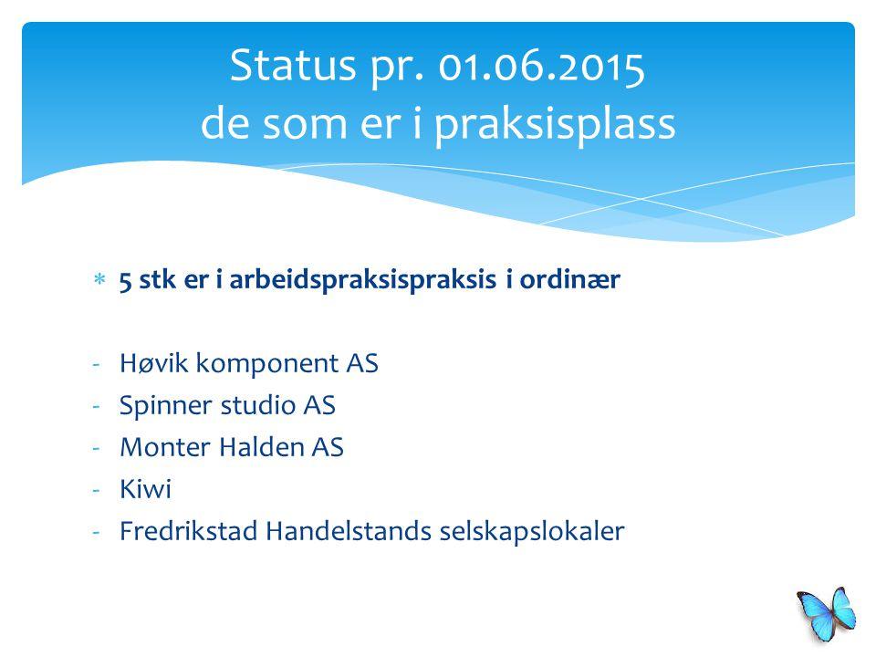  5 stk er i arbeidspraksispraksis i ordinær -Høvik komponent AS -Spinner studio AS -Monter Halden AS -Kiwi -Fredrikstad Handelstands selskapslokaler