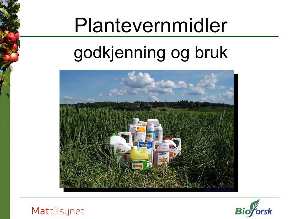 Godkjenning av plantevernmidler V Godkjenningen omfatter fareklassifisering og merking av preparatene Merkingen skjer iht.