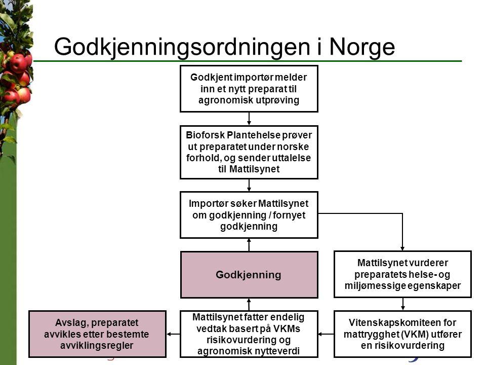 Godkjenningsordningen i Norge Godkjent importør melder inn et nytt preparat til agronomisk utprøving Bioforsk Plantehelse prøver ut preparatet under n