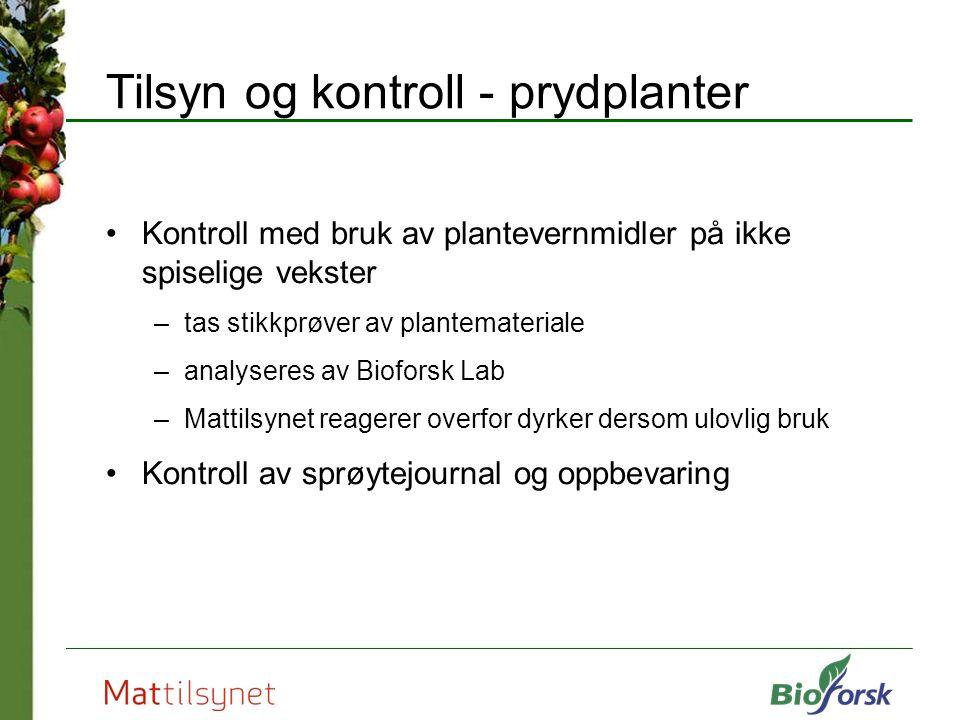 Tilsyn og kontroll - prydplanter Kontroll med bruk av plantevernmidler på ikke spiselige vekster –tas stikkprøver av plantemateriale –analyseres av Bi