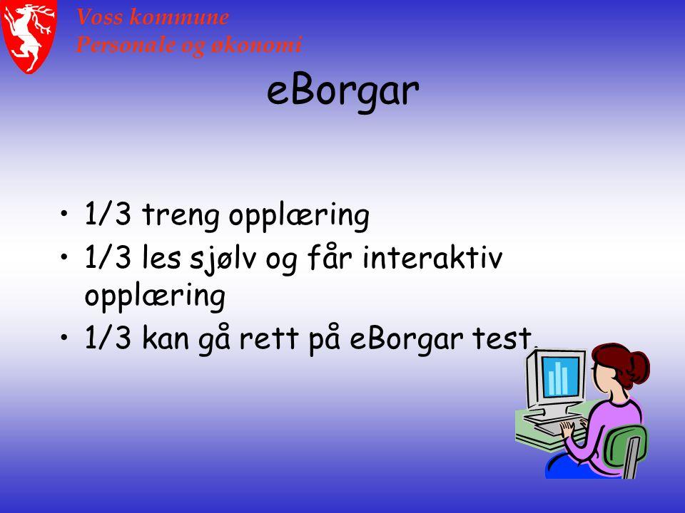 Voss kommune Personale og økonomi eBorgar 1/3 treng opplæring 1/3 les sjølv og får interaktiv opplæring 1/3 kan gå rett på eBorgar test.