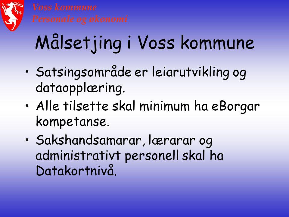 Voss kommune Personale og økonomi Målsetjing i Voss kommune Satsingsområde er leiarutvikling og dataopplæring.
