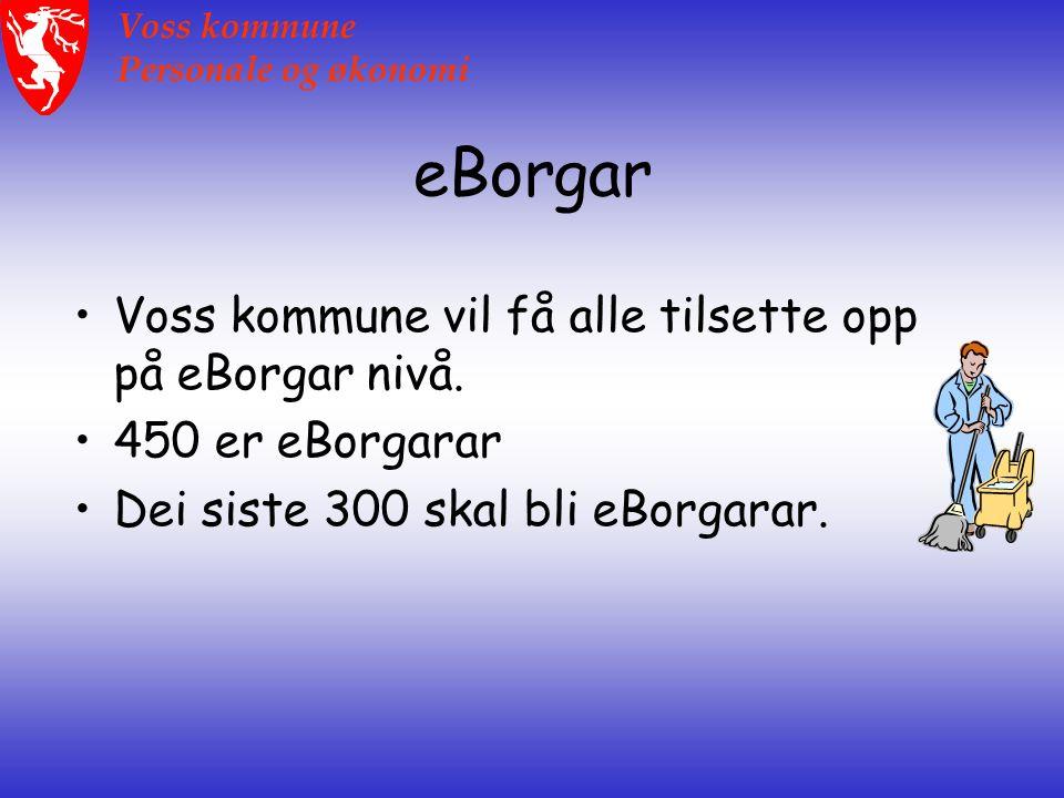 Voss kommune Personale og økonomi eBorgar Voss kommune vil få alle tilsette opp på eBorgar nivå.