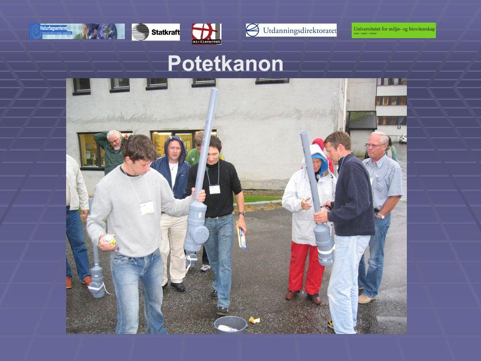 Potetkanon