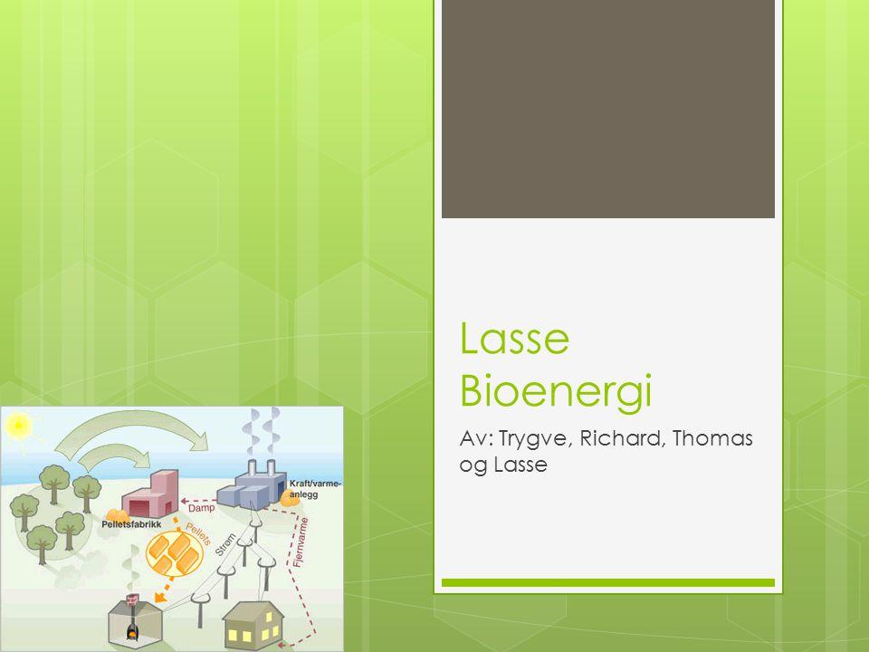 Lasse Bioenergi Av: Trygve, Richard, Thomas og Lasse